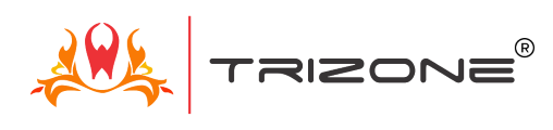 Trizone Entertainment Pvt. Ltd.